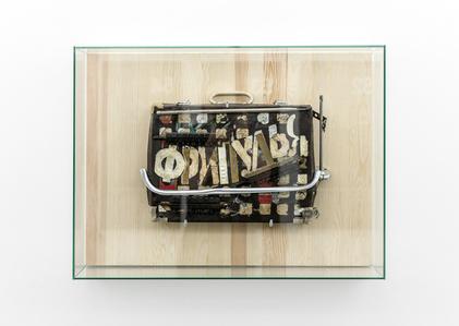 Fripulia Suitcase