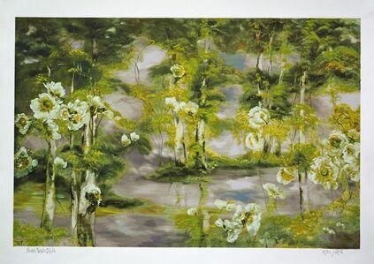 Pavots forêt 1