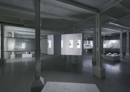 'Four Works' installation view: 'Swarm'