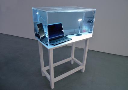 Still Life (under water)