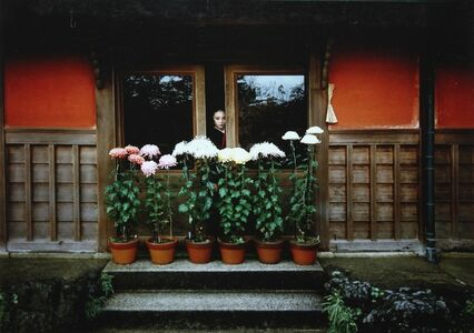Untitled (Girl looking out of the window - with flowers)