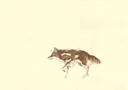 Apropiación de un coyote