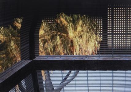 Window #6