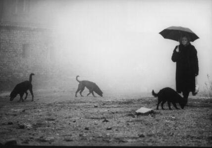 Béla Tarr, Damnation (Kárhozat), 1988, courtesy Béla Tarr
