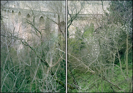 February Diptych