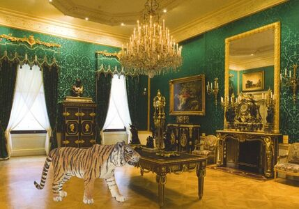 Bengal Tiger in Large Drawing Room