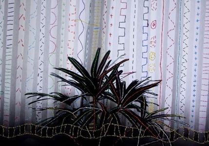 Cortina e Planta