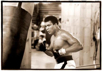Muhammad Ai Training