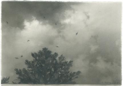 Flock, Pine 2