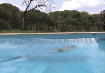 El Nadador