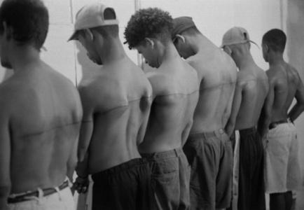 Eine 250 cm lange Linie, tätowiert auf 6 bezahlte Personen, 1999, Havanna, Cuba