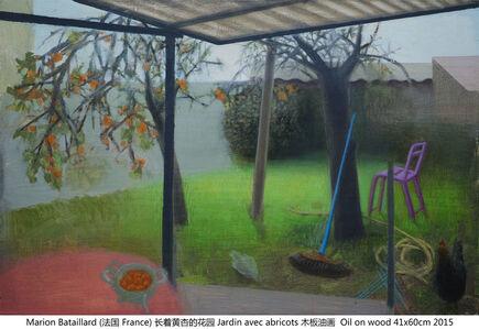 长着黄杏的花园 Jardin avec abricot
