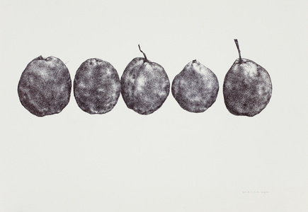 Pear No. 5 梨子 5