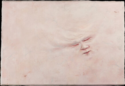 Skinscape II
