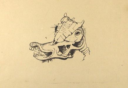 Pferdeschädel / Horse Skull