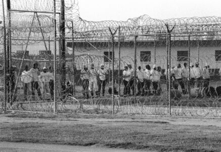 Men going to work in the fields of Angola prison