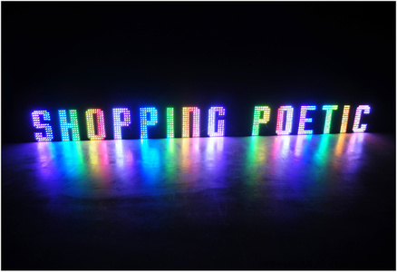 Poetic Consumption LED Light Box