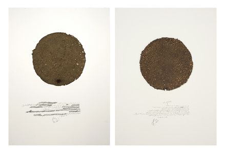 Soil (diptych) from the Room series