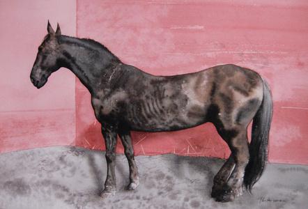 休息的马; Resting Horse