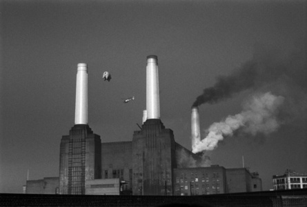 Pink Floyd Animals, Animals Cover Shoot, Battersea Power Station, London,