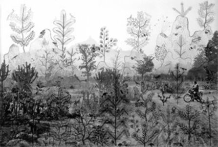 Fields of Sight: Scenes from Ganjad (in collaboration with Rajesh Vangad) Mountains and Trees