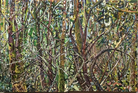 Hyperbolic Nature--Washington Woods (diptych)