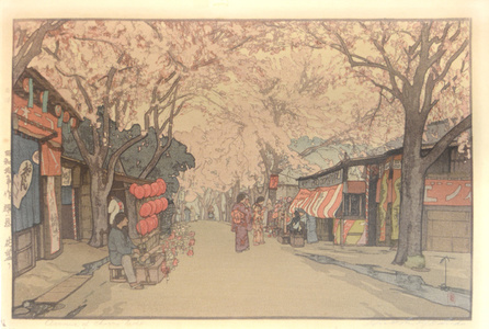 Avenue of Cherry Trees