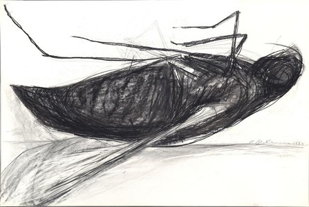 untitled (from the series 'Flies')