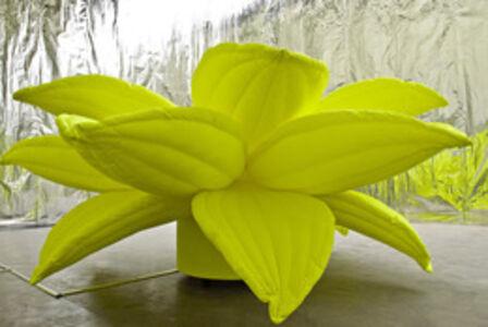 Flower, Flower (Large Yellow)