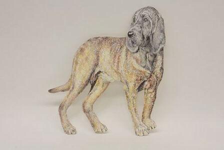 Dog (Hound)