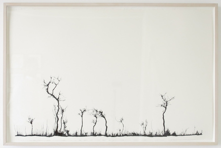Untitled (Traces)