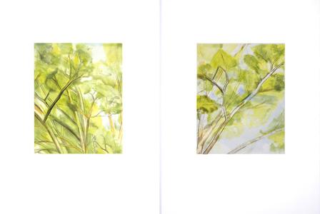 Pin Oak Detail (A & B)
