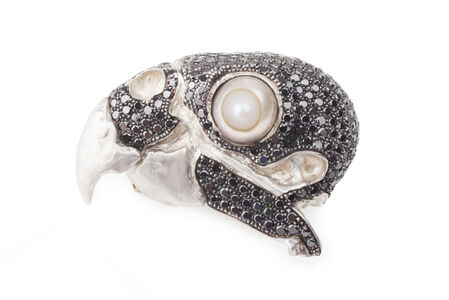 brooch Bird skull