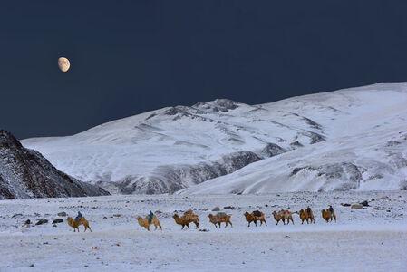 """Bronze Moon"" [Altai, Mongolia]"