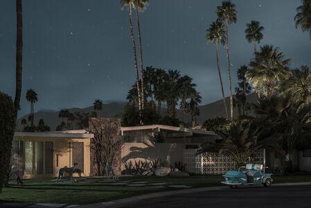 Cactus Rd - Midnight Modern