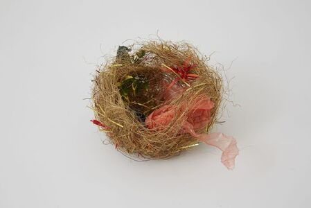 Untitled (Zebra finch nest)