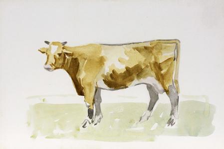 Cow, Facing Left