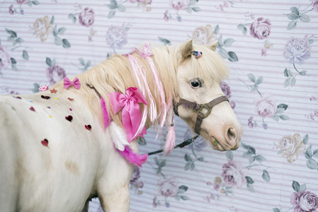 Rosie: Sparkle Pony