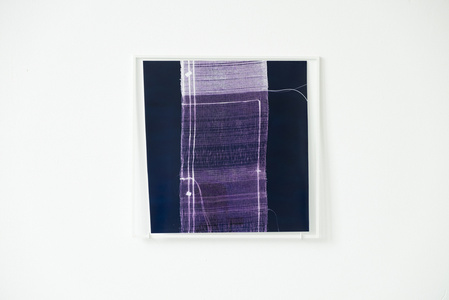 While Weaving a Liar's Cloth #20 (contact print)