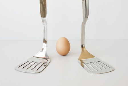 Spatula and Egg