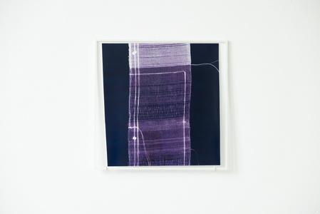 While Weaving a Liar's Cloth #21 (contact print)