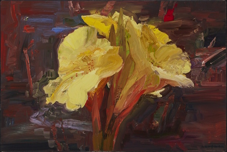 Yellow Lily in Denman's Garden