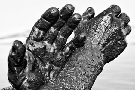 Hands, Alykes