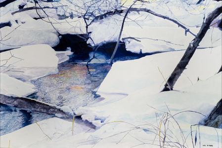 Snow Covered River Bank