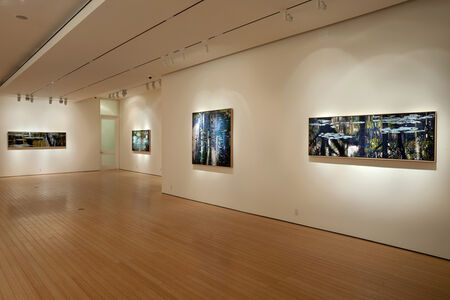 Transformation Gallery View