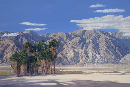 Saline Valley - Palm Spring, Death Valley