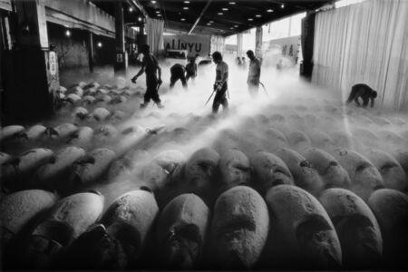 Tsukiji Fish Market, Tokyo, Japan: 1994.07