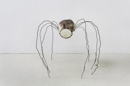 Mirrored Spider 镜面蜘蛛