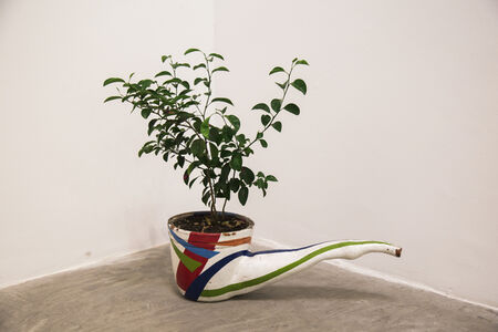 """Pipe Plant With Tangerine"""