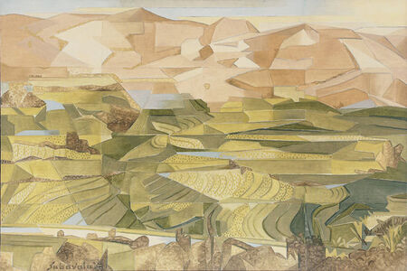 Rice Fields, Plani Hills - II